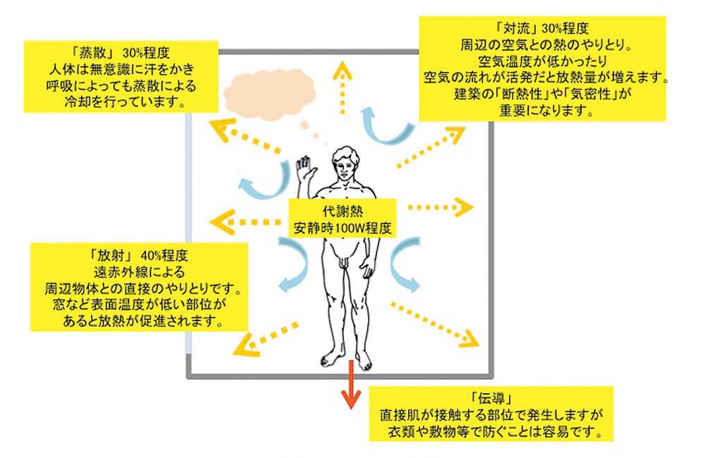 図3 人類の放熱は4ルートあり