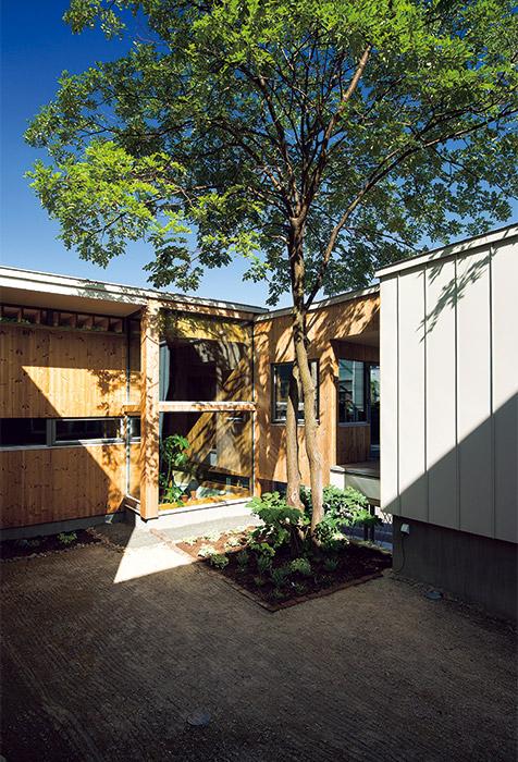 シンボルツリーのあるコートハウス