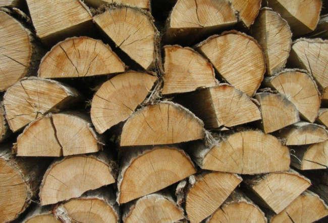薪の中心に入っているヒビが、よく乾燥していることの証