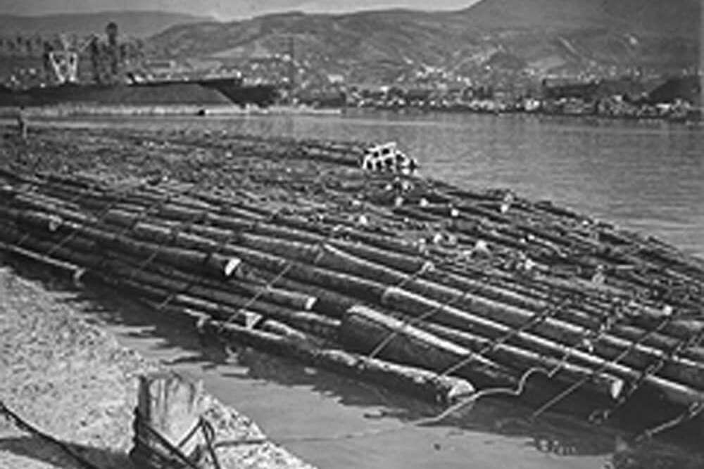 大正7年に芳賀スキー店創業、昭和35年から輸入原木の卸売を始める。ハートランドホームは現在、コンセプトハウスとショールームを公開中