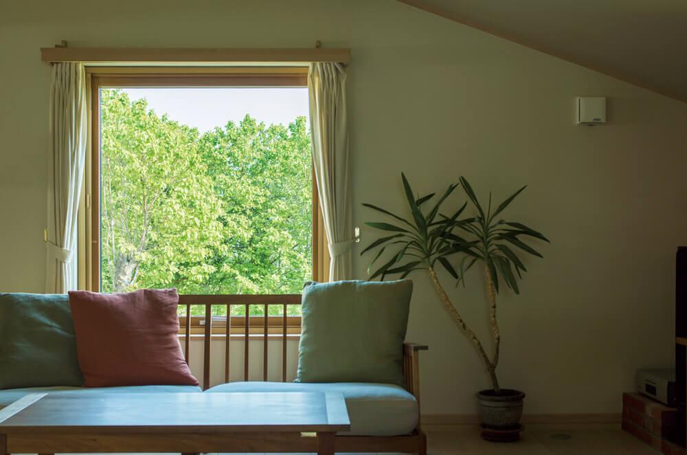 ソファやセンターテーブルとのバランスを考えた開口レイアウトで、ガラス越しの緑が絵のようなリビング
