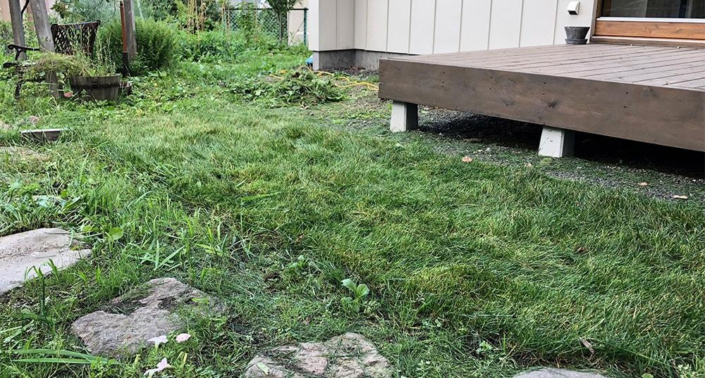 札幌の初心者芝刈りは続く