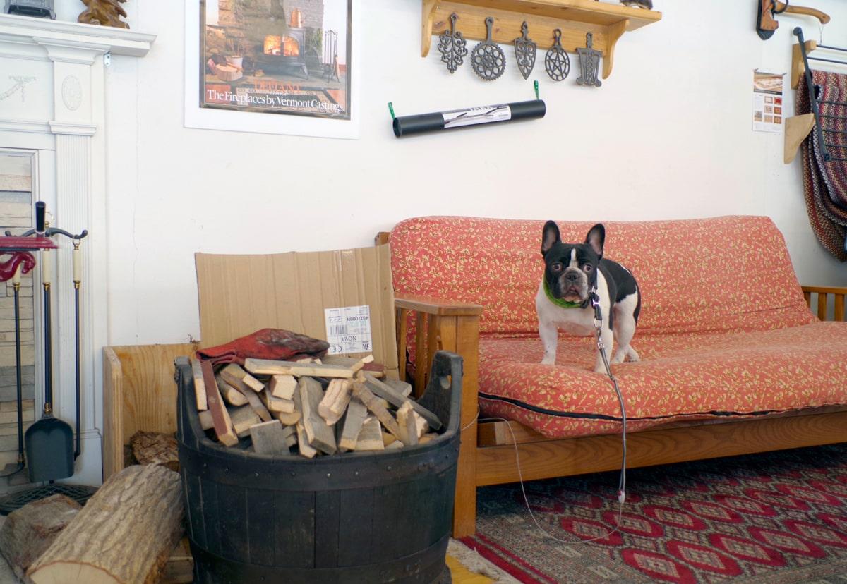 お店に入ると、看板犬のフレンチブルドッグ、アトムくんがしっぽを振ってお出迎えしてくれる