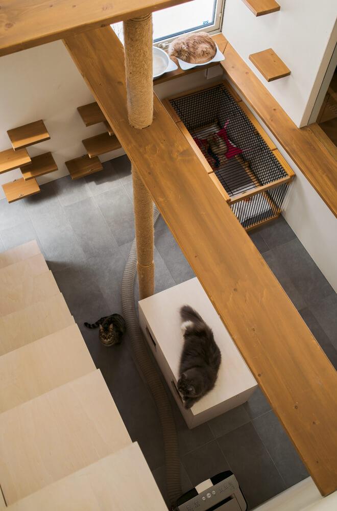 猫の部屋には、麻紐を巻いた爪とぎ柱と多種多様なキャットウォーク、観察窓と物見台、主寝室への階段と寝床を兼ねた収納などを造作。猫型の穴が開いた台の中には、トイレを収納。愛猫家、川村さんならではのツボを押さえた仕掛けがあちこちに散りばめられている