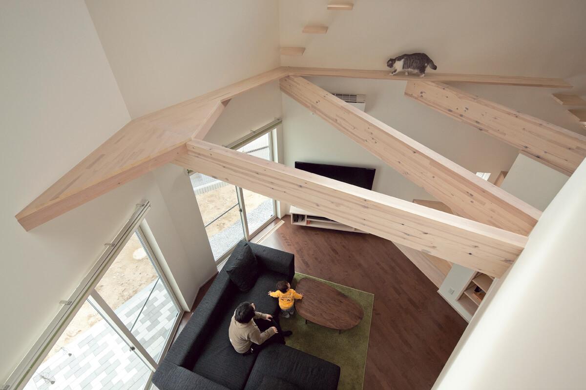 壁に沿ってつくられたキャットウォーク、階段のような変形の棚、多角形のリビングはまさしく「普通じゃない家」