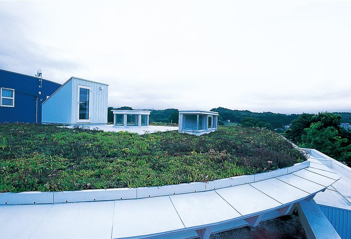 平屋の上に載せた円盤状のルーフ。屋上緑化し、テラス的な空間としても楽しめる。中央の円筒(リング)と右手のボックスは、明かり取り