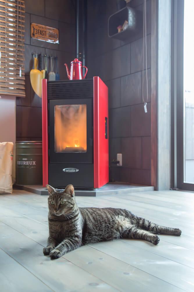 暖かいペレットストーブの前でくつろぐ愛猫