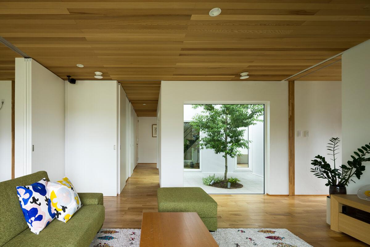 回遊動線の中心に置かれた中庭は、この家の象徴的な存在に