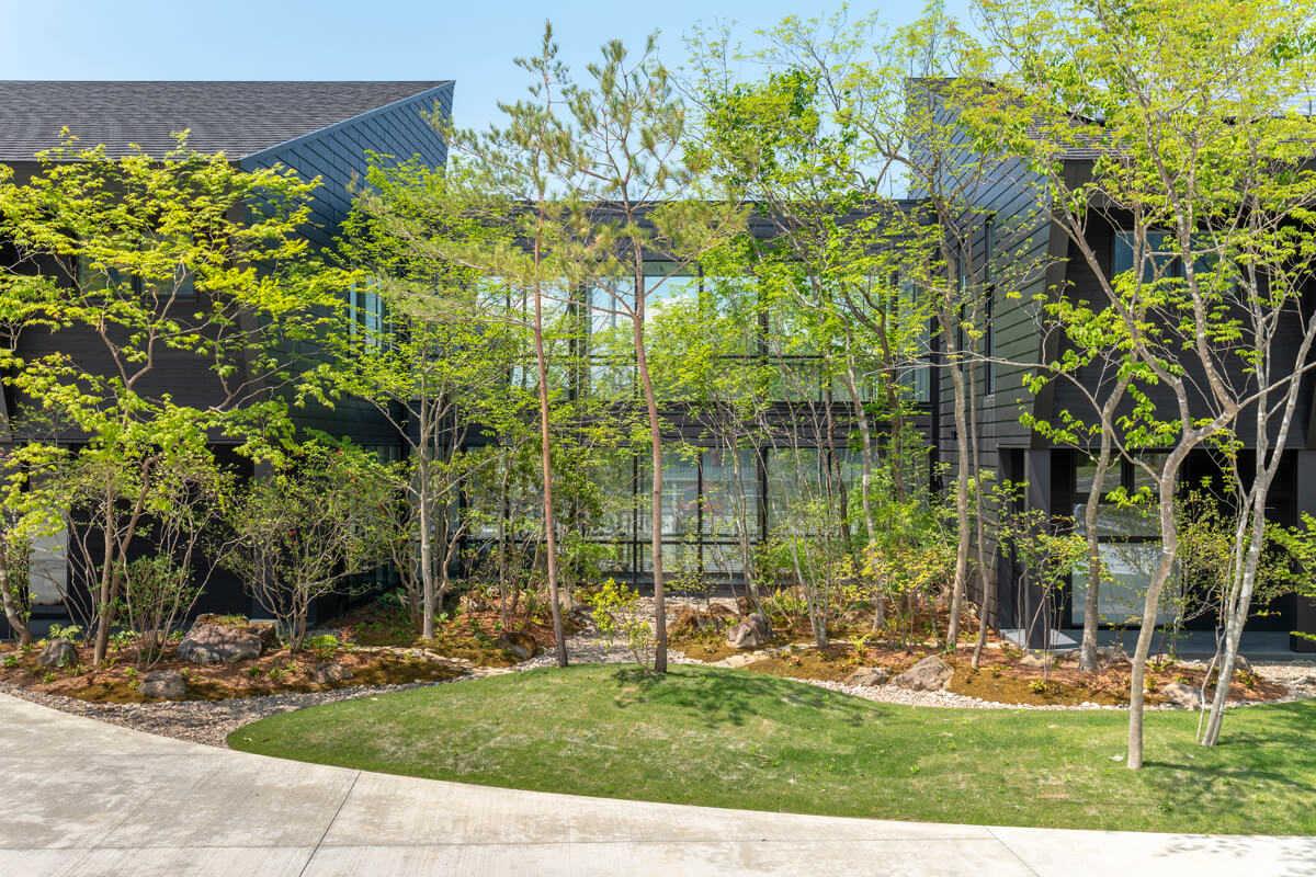 渡り廊下の凹み部分を活かして設けられた、木々の緑あふれる中庭