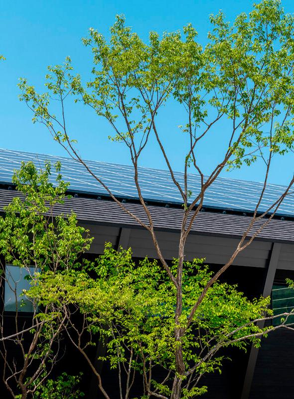 東南に向いた大屋根には太陽光パネル70kWを搭載。50kWの蓄電池で活用している