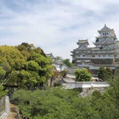 リベンジ!姫路城。オススメは百間廊下