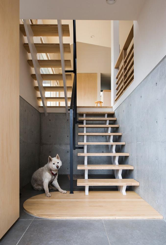 扉を開けると、ゆったりとした階段と愛犬が出迎えてくれる