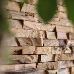 「木」のアクセントウォールでつくる、くつろぎのリビング。