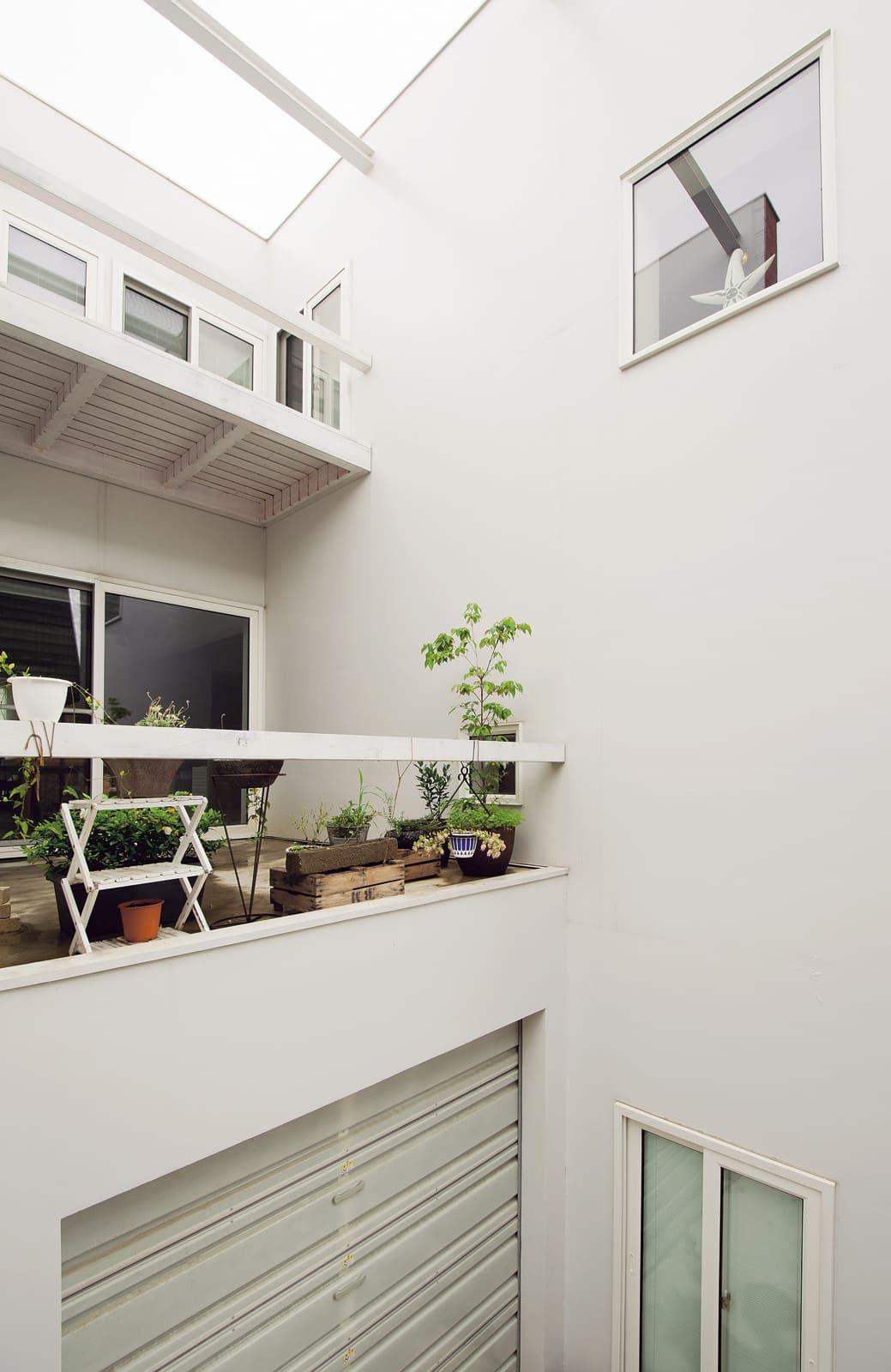 敷地の裏手にある坪庭から2〜3階を見上げる。2階テラスでは、植物を育てたり食事をしたり。壁に囲まれているため、周囲の視線は気にならない