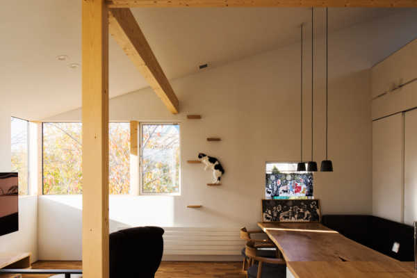造作の工夫で過ごしやすく!ペットと暮らす家のアイデア集