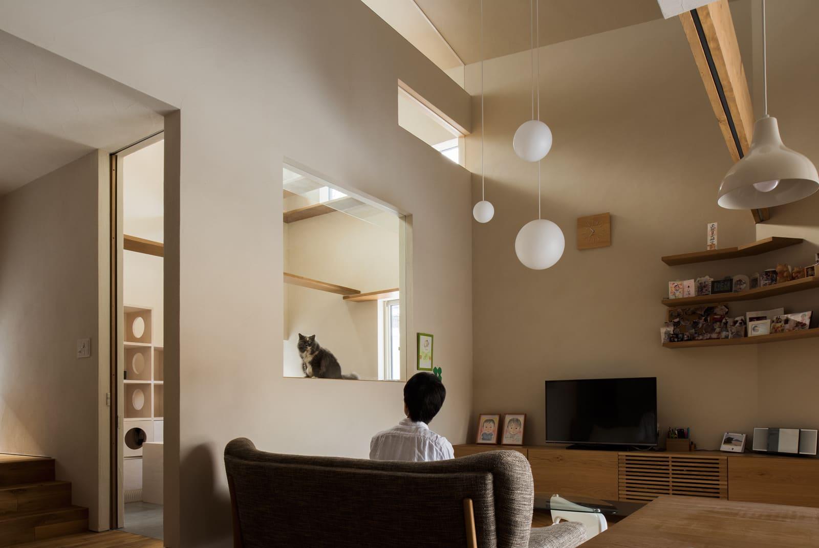 リビングから猫の部屋を見る。猫もガラス張りの大開口越しに家族の様子を見るのが大好き
