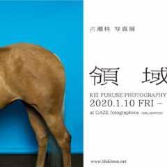 1/10(金)〜1/19(日)古瀬桂 写真展「領域」