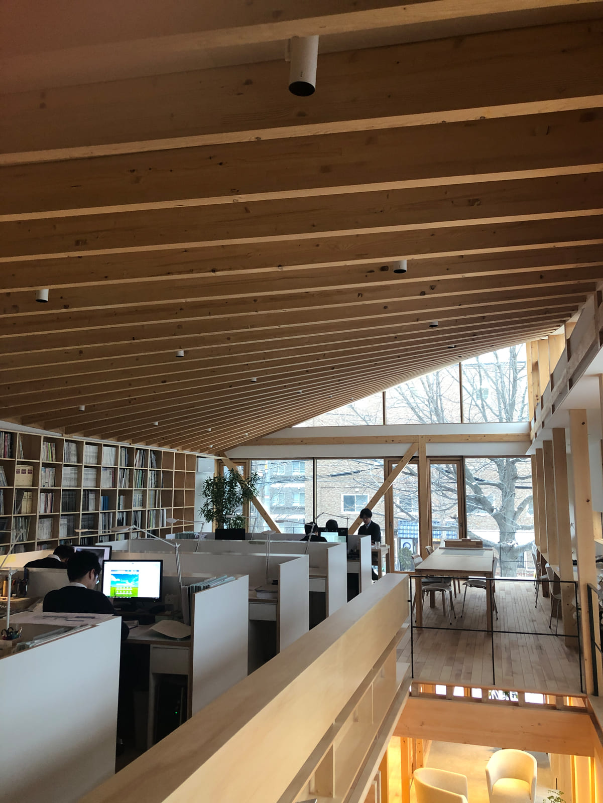外観の謎が解けた!このHPシェル形状の天井が何よりの見どころ。なめらかな曲線美に木造建築の新しい可能性が感じられる