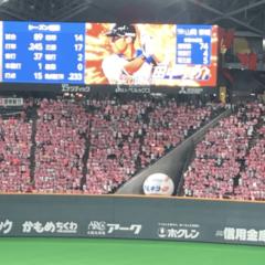 プロ野球が早く見たい。。
