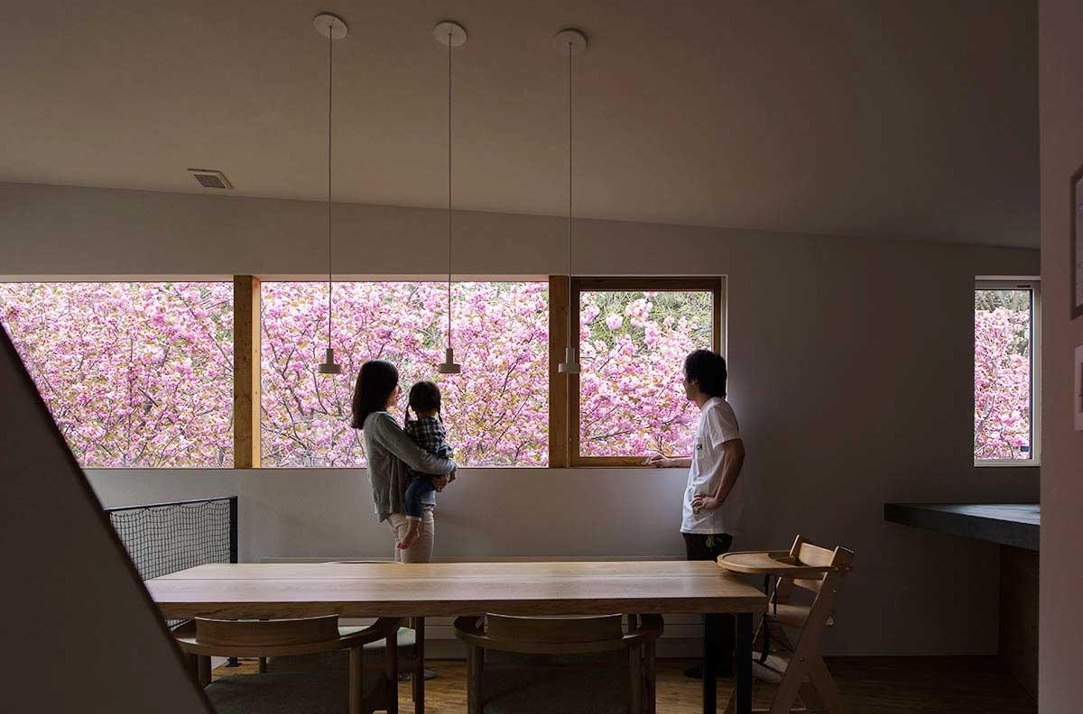 春、窓の外はピンク一色。毎日家でお花見が楽しめる