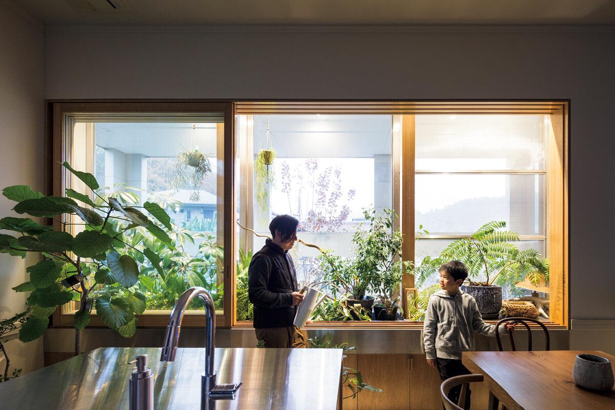 ダイニング・キッチンには、水はけまで考えた温室を兼ねる大きな窓。Hさんが選りすぐった植物たちが青々とした葉を茂らせている