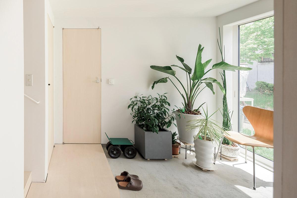玄関土間の一角にお気に入りの観葉植物を並べたお住まい。帰ってきてすぐ緑が目に入るのも気持ちがいい