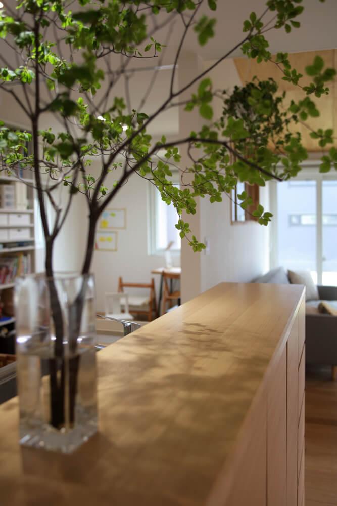 キッチンの造作カウンターに存在感のあるグリーンをディスプレイ。生き生きとした緑がシンプルな空間によく映える