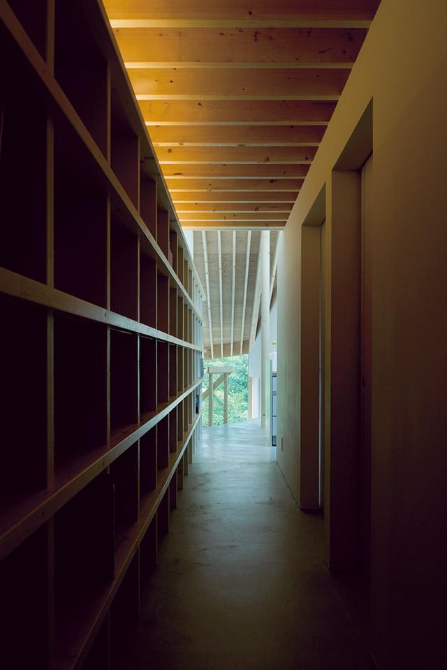 玄関は光を抑えた長いトンネルのような空間。ここから光に導かれるようにリビングへと場が展開していく