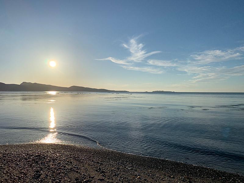 夕方の「アザラシ海岸」。凪いだ海でアザラシたちは一日中のーんびり