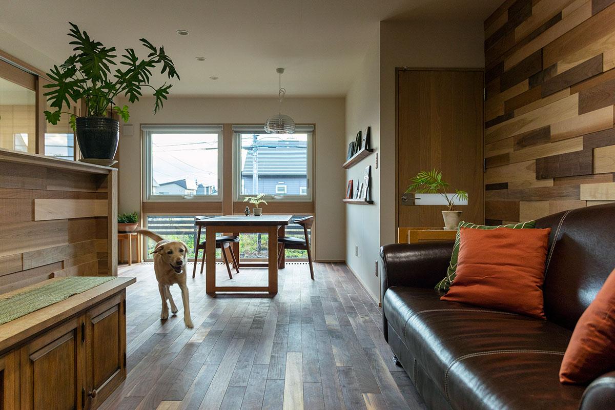 木の温かみに包まれた家のなかで元気に過ごすギンくん。人も犬も笑顔になるような住まいになった