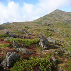 いざ、憧れのトムラウシ山へ紅葉登山