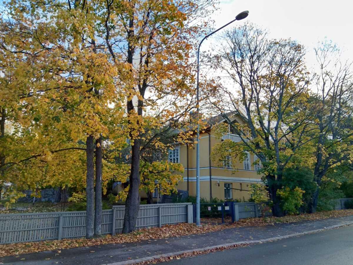 黄色の紅葉と外壁で景観にも調和が生まれている