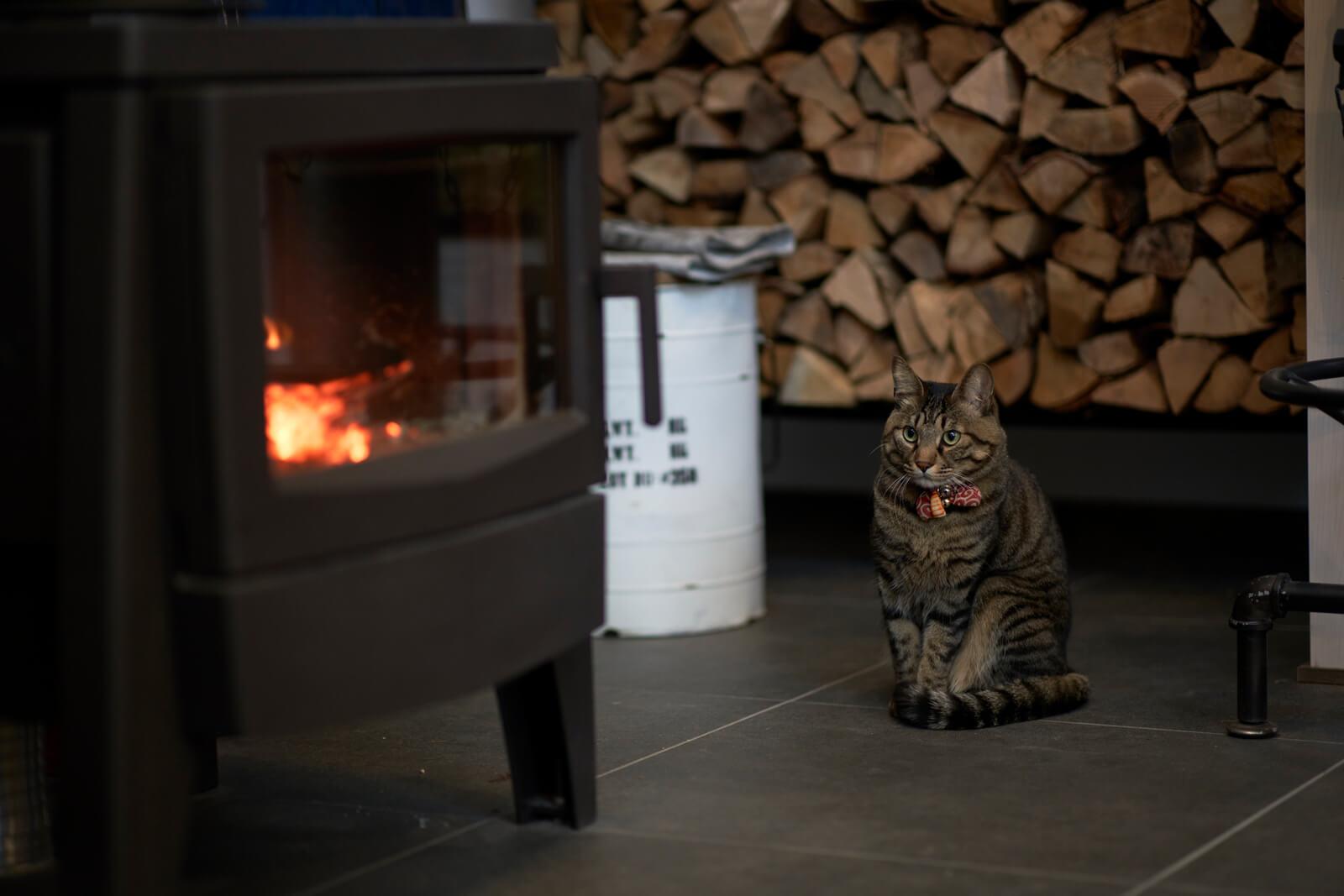 薪ストーブ前の特等席を独占するリン太郎くん。猫は家の中で最も快適な場所を知っていると言うが、まさにその通り