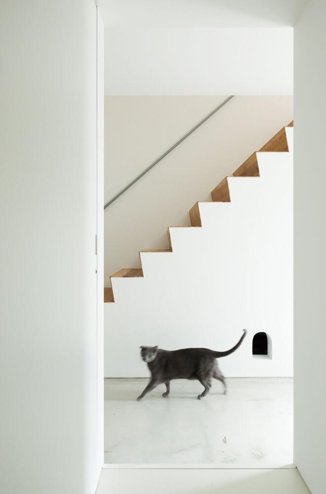 寝室・水まわり側の動線から階段を見る。階段下は納戸兼猫のトイレスペース