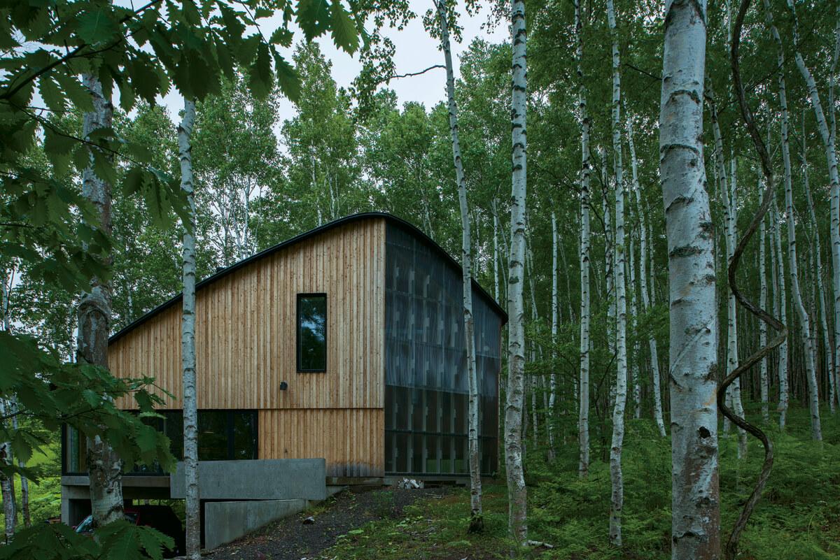 白樺の林の中に佇む姿がしっくりとくる外観デザイン