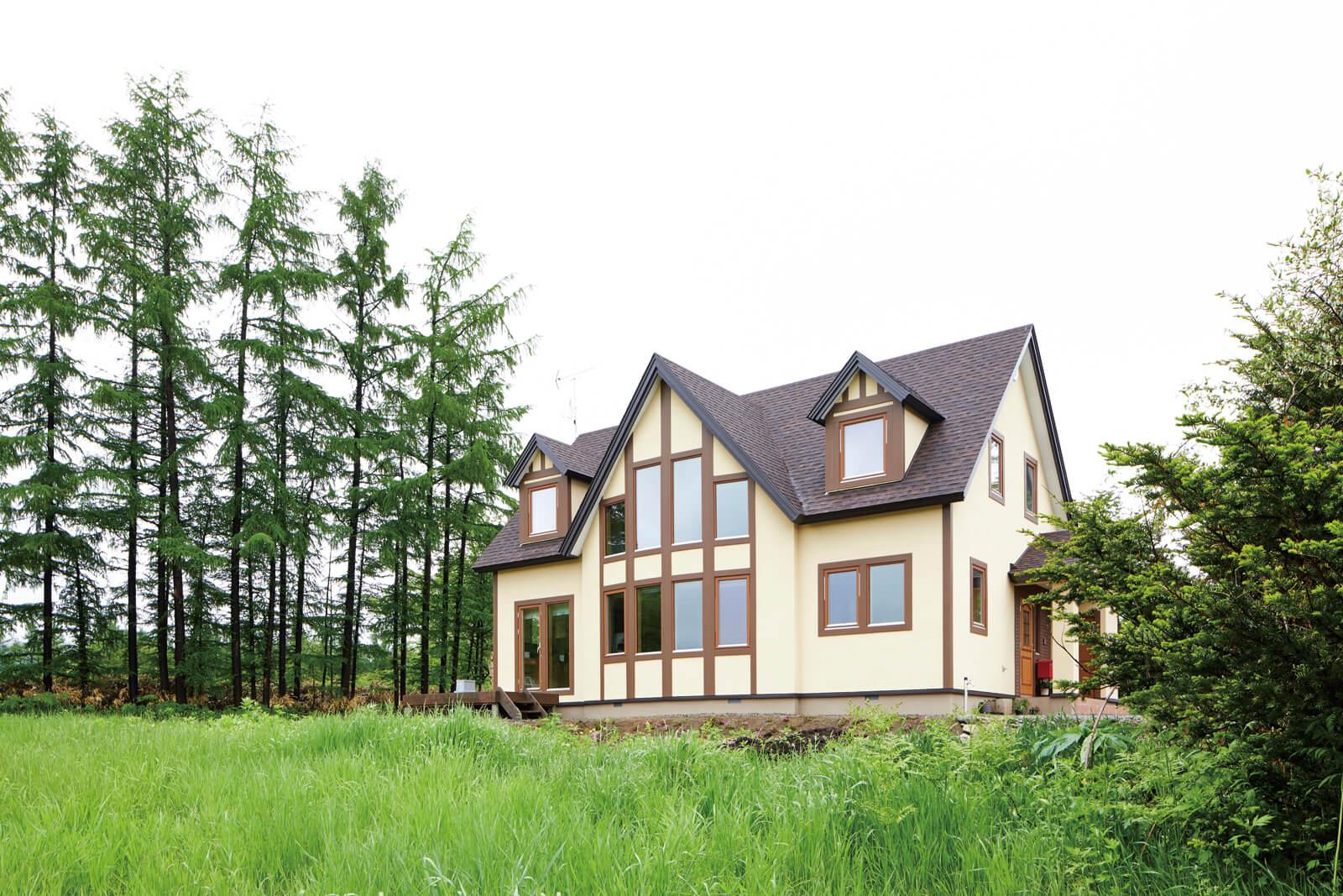 牧歌的な風景に溶け込むNさん宅。大小の三角屋根と連続する大開口が外観のアクセントに