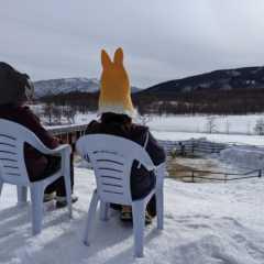 冬の北海道で、テントサウナを体験