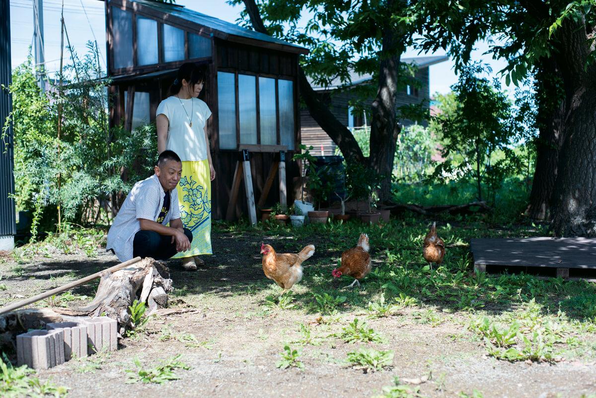 鶏小屋もCさんご夫妻による手づくり。DIYスキルにも磨きがかかる