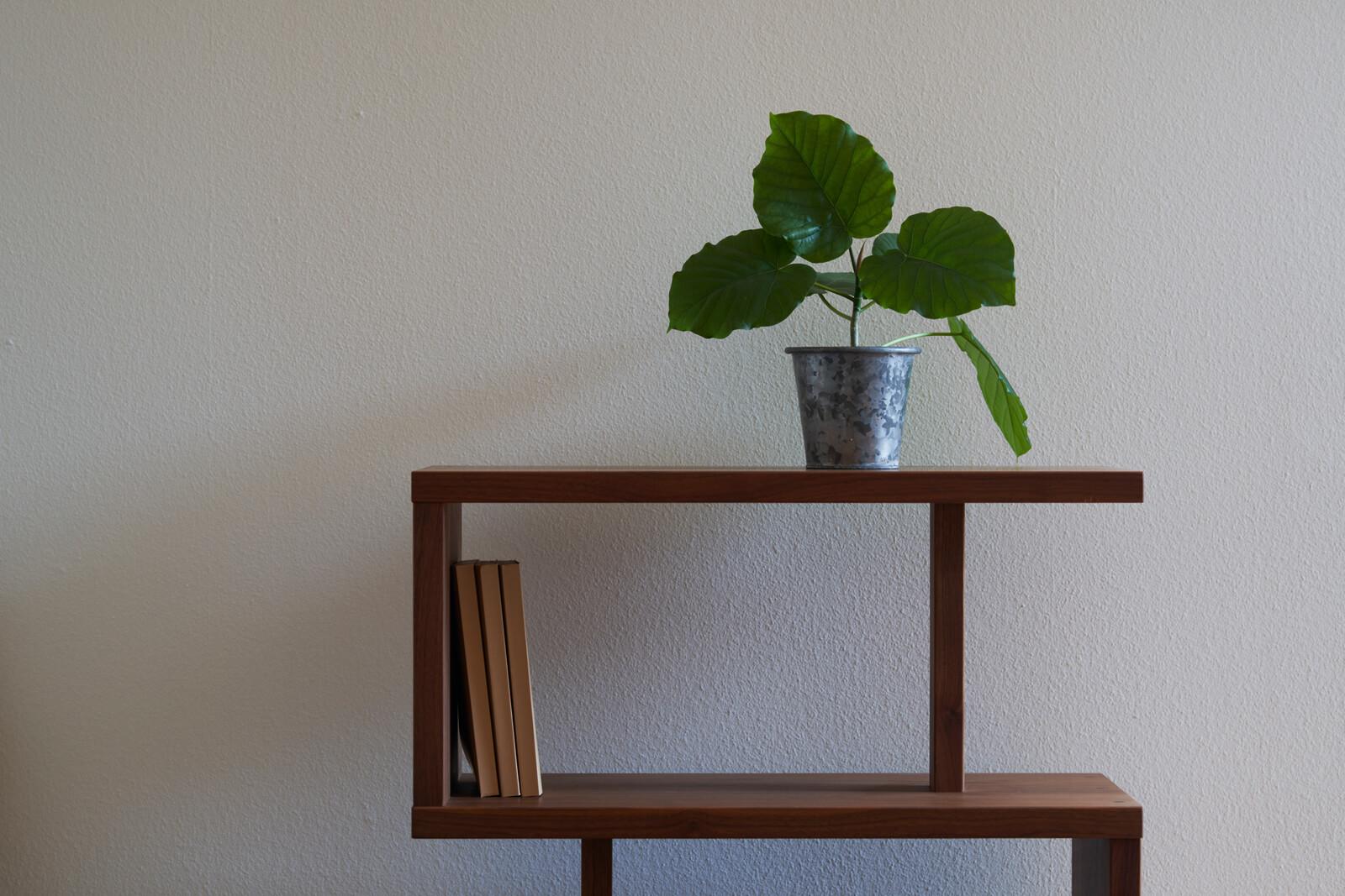 上品で落ち着いた趣をもたらす漆喰塗り。調湿・消臭効果が高く、室内は常に気持ちの良い空気が保たれる