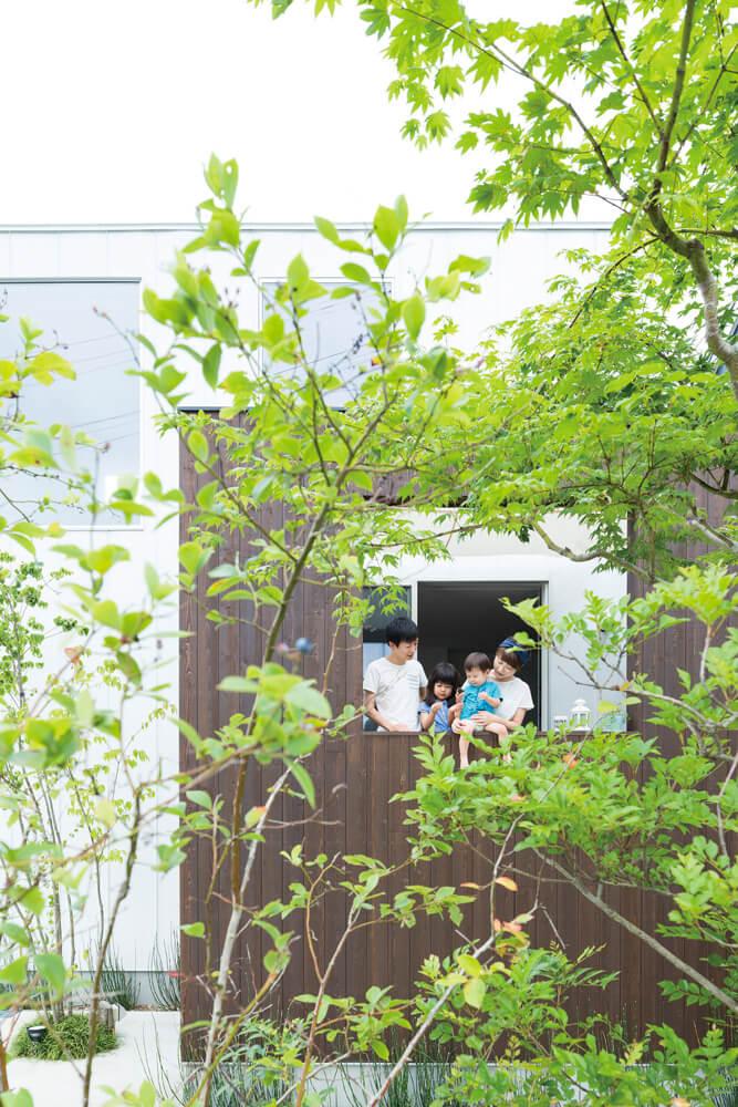 室内からも外部からも愛でることができる植栽。ゆるやかに外からの視線を遮りつつ、緑を楽しめる仕掛けとなっている