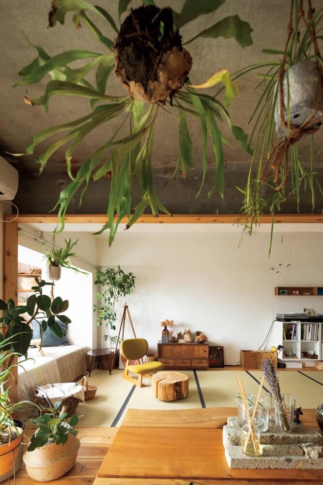 ダイニングの隣に配した和室は、ご夫妻のリビング兼寝室。通気性やメンテナンス性を考え、い草ではなく和紙が原料の畳を用いた