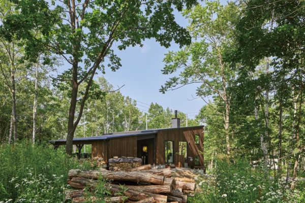 自然の息吹あふれる森と地形を生かした「スキップフロア」の家
